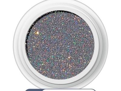Ritzy/SILVER  HOLO superfine glitter