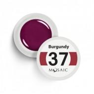 37.Burgundy 5ml